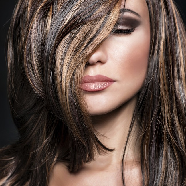 Highlights long hair best long hair 2017 best 25 highlights for dark hair ideas on pmusecretfo Gallery